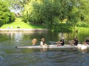 The Drawers of St Radegund are paraded down the length of the Cam